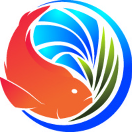 Medium fish logo
